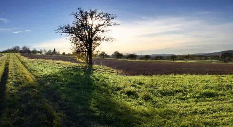 comprar un terreno con Infonavit